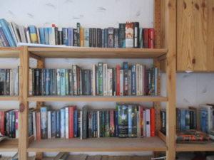 Bücherregal in halbwegs aufgeräumtem Zustand